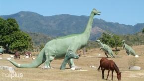 tour-to-la-gran-piedra-baconao-park-239